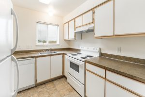 Victoria Place Kitchen 2