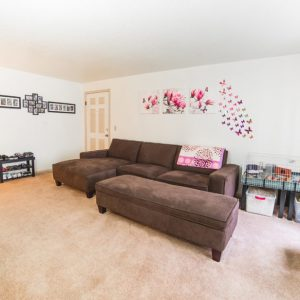 Sunnyview Village Living Room 1
