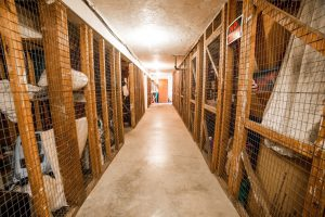 cliff manor storage