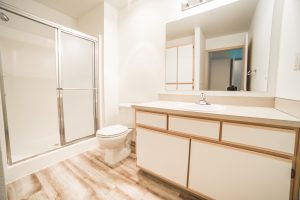 Stonebriar Bathroom 1